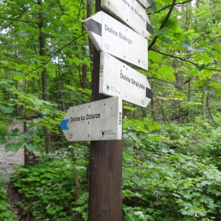 Signpost, Sony DSC-WX50