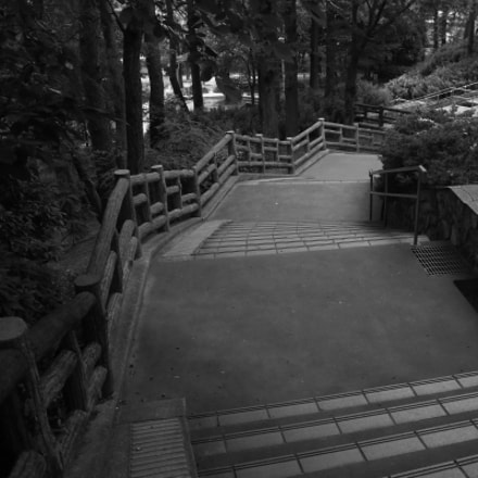 pathway, Canon EOS M6, Canon EF-S 18-135mm f/3.5-5.6 IS
