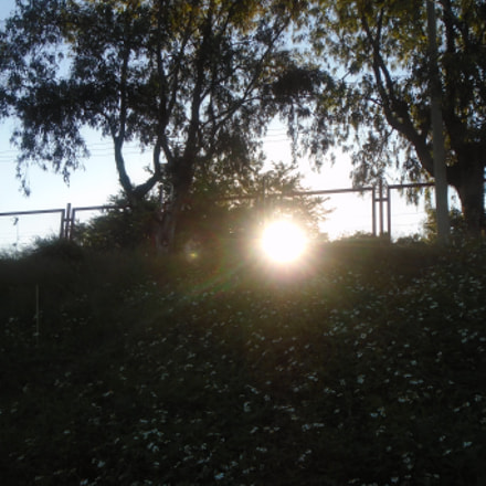 Rayos de sol., Sony DSC-W800