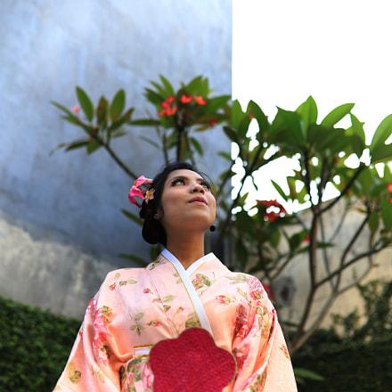 Pink Japanese, Canon EOS 6D MARK II, Sigma 35mm f/1.4 DG HSM