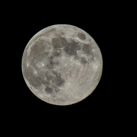 Full moon tomorrow, Canon POWERSHOT SX420 IS