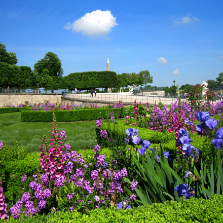 Les Tuileries, Canon POWERSHOT A3100 IS