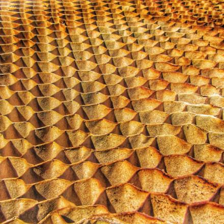Honeycomb, Canon POWERSHOT ELPH 350 HS