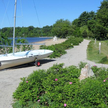 Summer Lakeside, Canon POWERSHOT A560