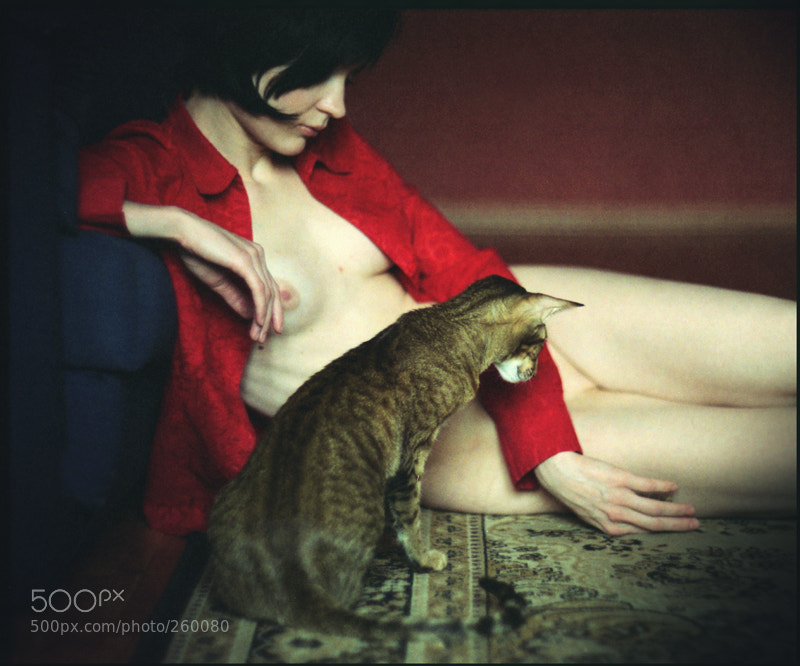 Photograph She and her cat by Klem  on 500px