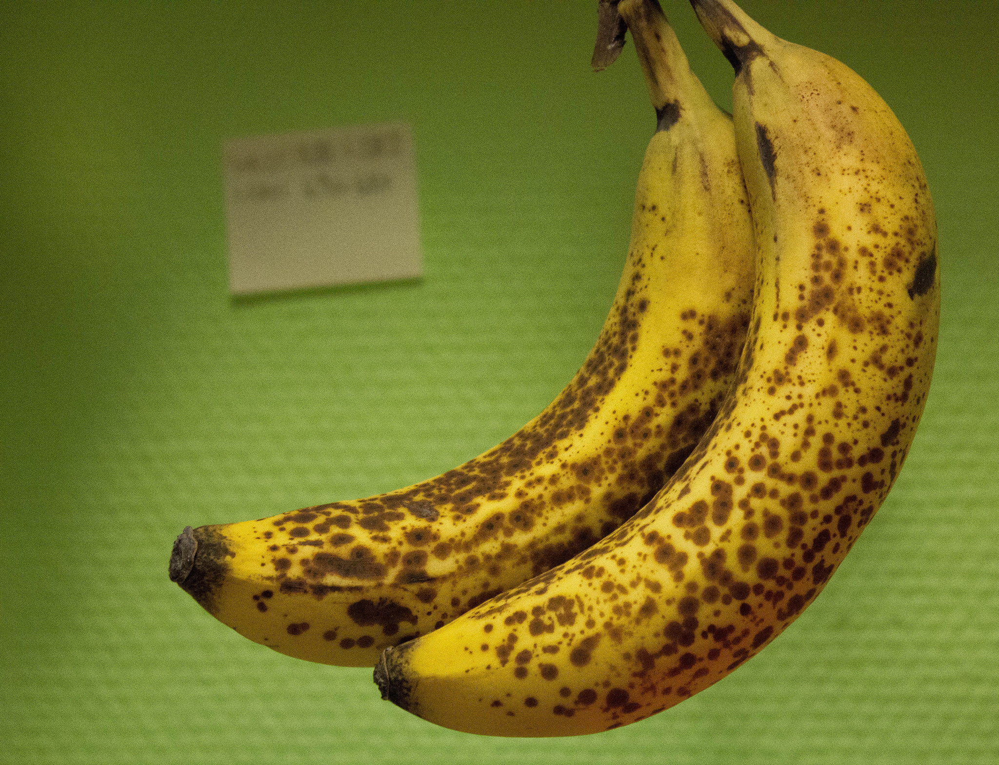 Photograph Bananas by Thomas G. on 500px