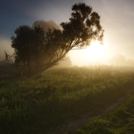 Дорога к солнцу, а может и Highway to hell, Canon EOS 5D MARK II