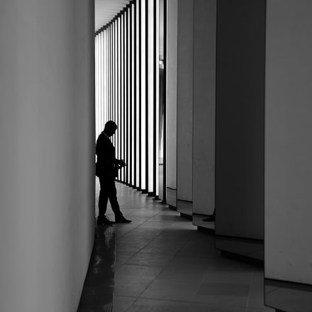 Alone, Nikon D610