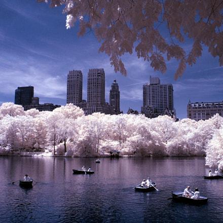 Central Park IR, Fujifilm FinePix E550