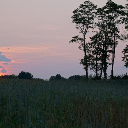 Summer sunset, Sony ILCE-3000, Sony E 18-55mm F3.5-5.6 OSS