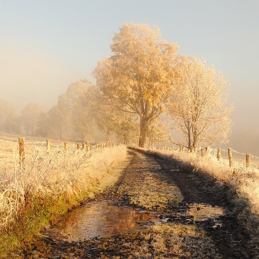 Photograph colorful winter by Sebastian Luczywo on 500px