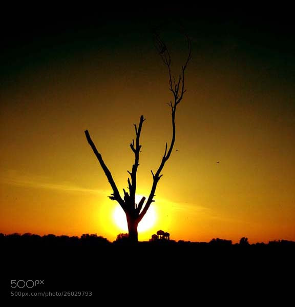 Photograph Last SunSet 2012 by muhammad waseem on 500px