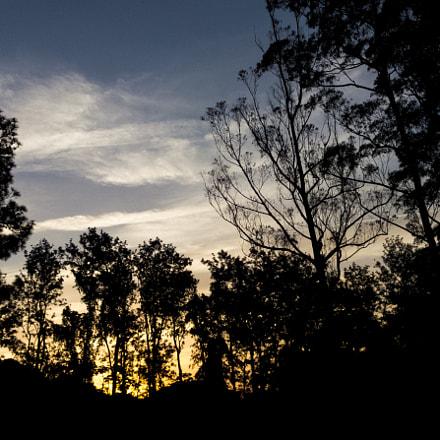Wild silhouette, Fujifilm FinePix HS30EXR