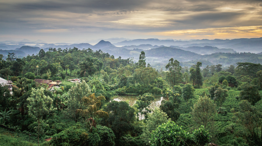 Dolosbage, Sri Lanka by Son of the Morning Light on 500px.com