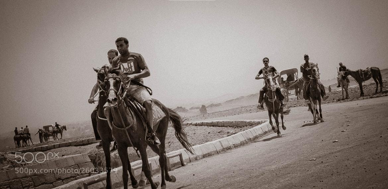 Photograph *** by Ahmd Naguib on 500px