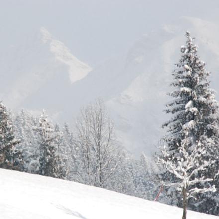 VALLE DI SCALVE, Nikon D80, AF-S DX Zoom-Nikkor 18-135mm f/3.5-5.6G IF-ED