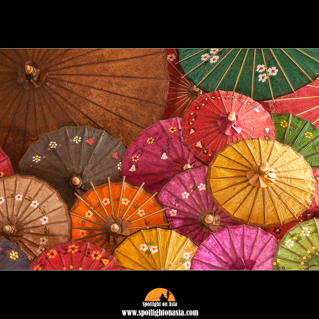 Photograph Umbrellas by Malcolm Fackender on 500px