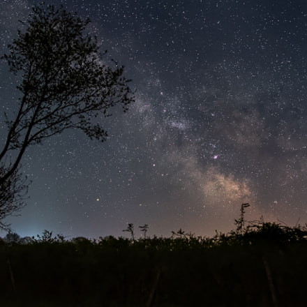 Milky Way, Nikon D810