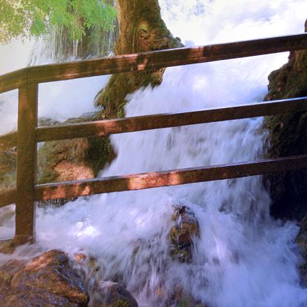 Water versus tree, Nikon COOLPIX L610