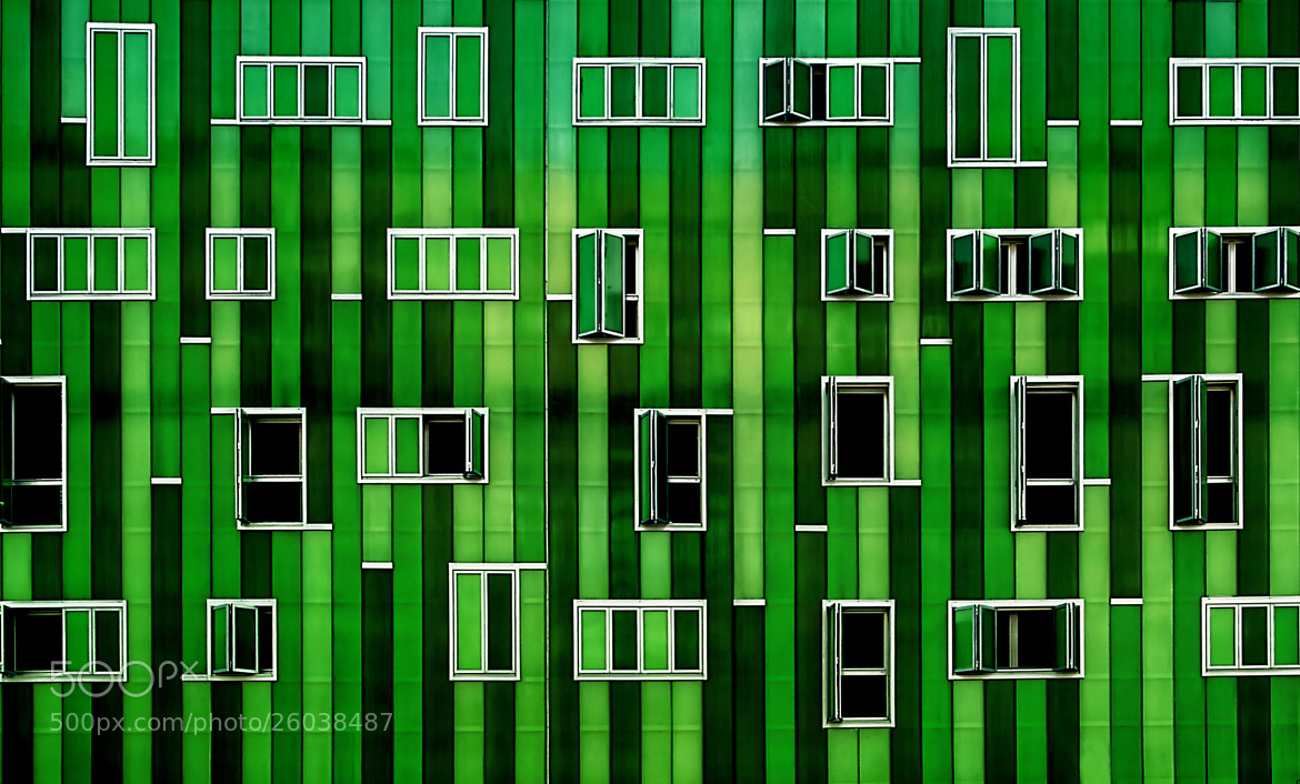Photograph Green by Alfon No on 500px