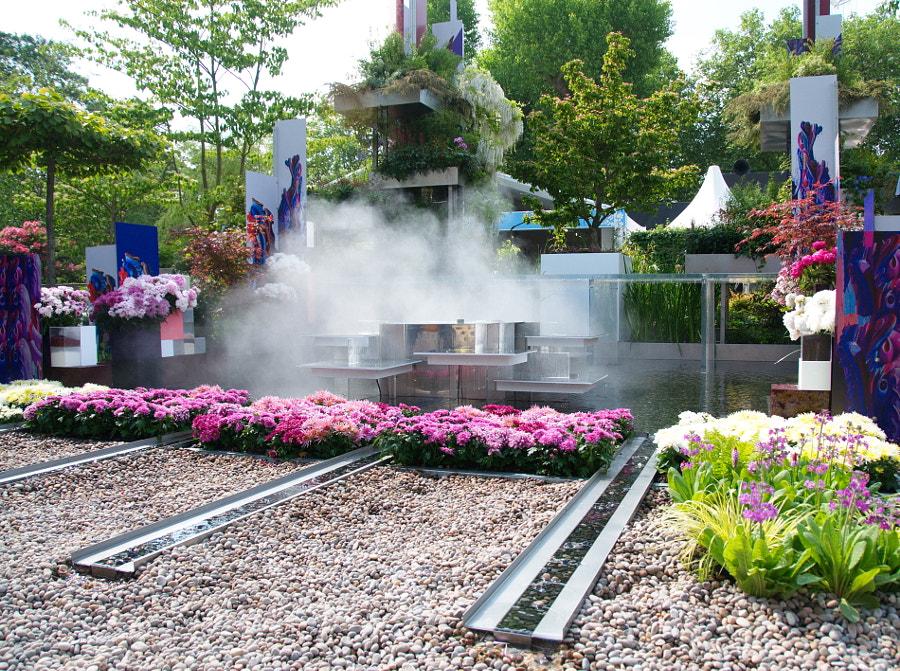 Wuhan Water Garden, Chelsea Flower Show 2018 by Sandra  on 500px.com