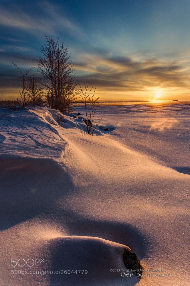 Photograph Winter's Splendor #6 - Sculpted by Dustin Abbott on 500px