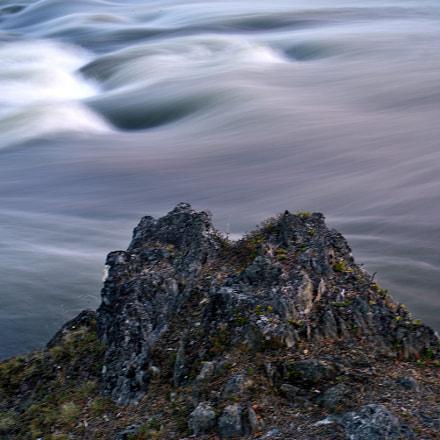 Natural abstraction, Nikon D610, Tamron SP 35mm f/1.8 VC