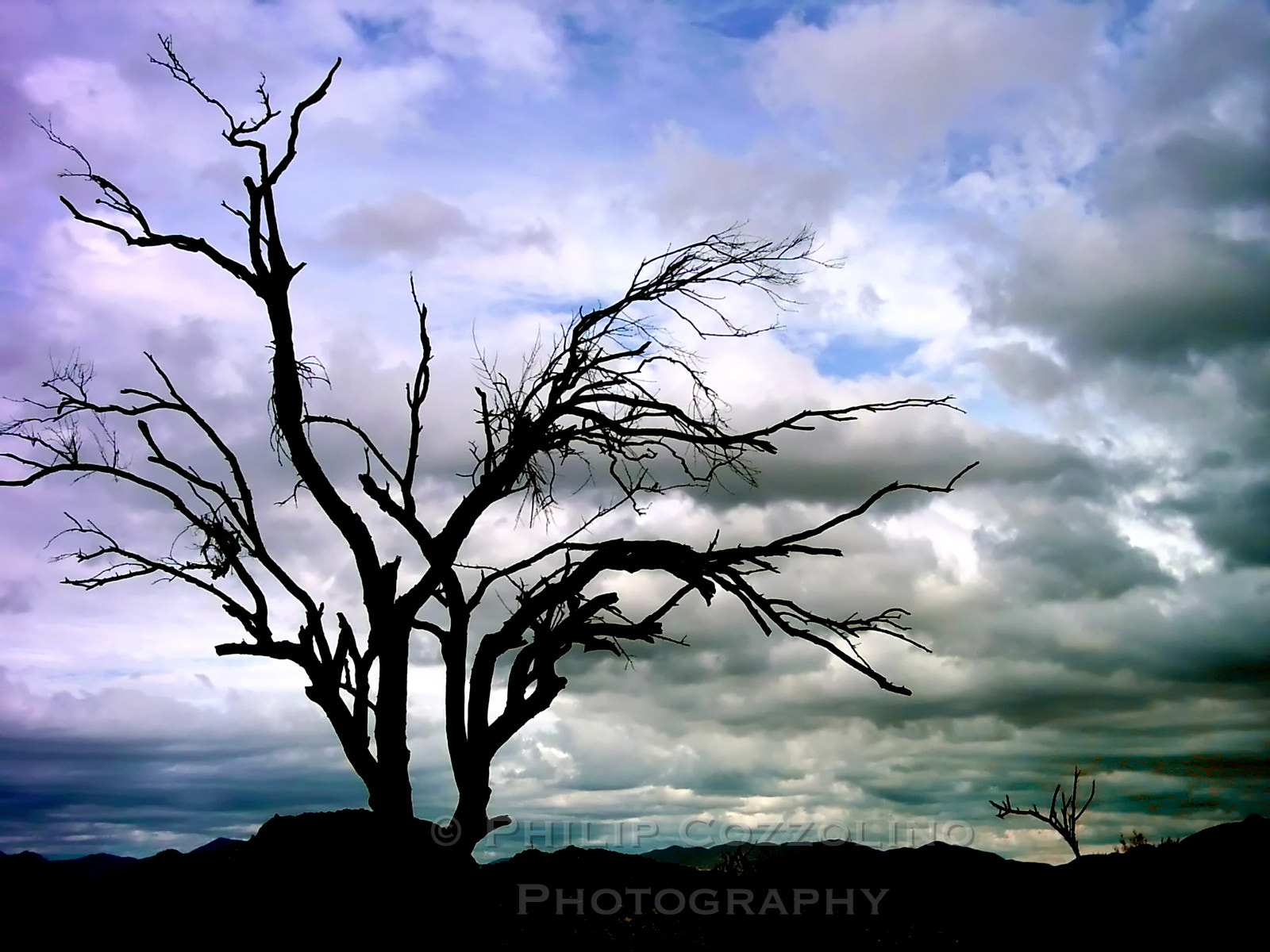 Photograph Gloomy Scottsdale by Philip Cozzolino on 500px