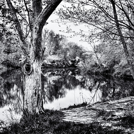 By the Pond, Panasonic DMC-ZS100