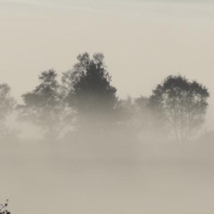 Chobham Common Misty Morning, Sony DSC-HX9V