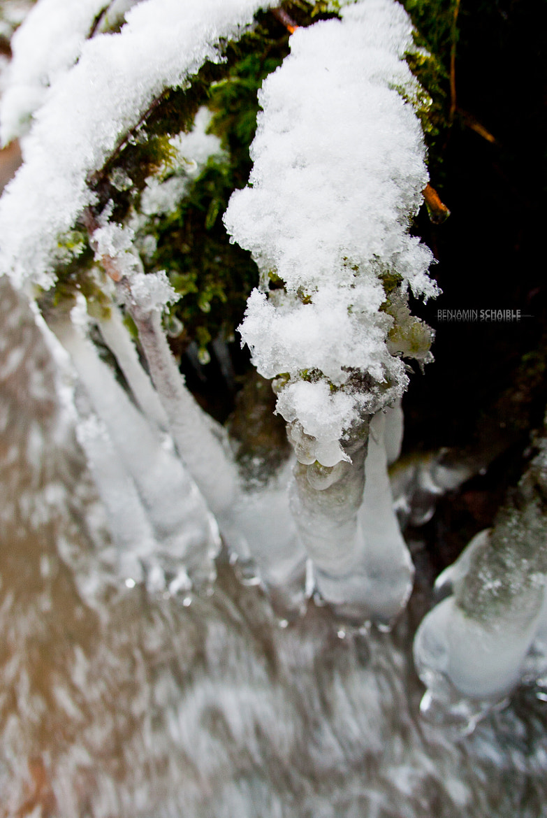 Photograph frozen.in.motion.four by Benjamin Schaible on 500px