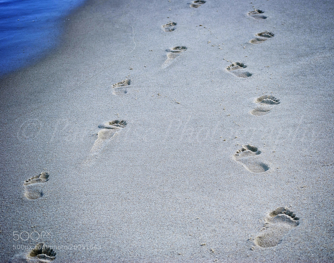 Photograph Footprints by Susan Paradise-Burke on 500px