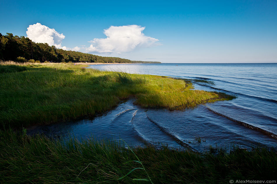 Photograph Finnish Gulf by Alex Moiseev on 500px