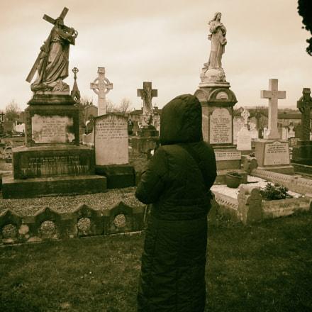 inside Midleton cemetery, Fujifilm FinePix E900