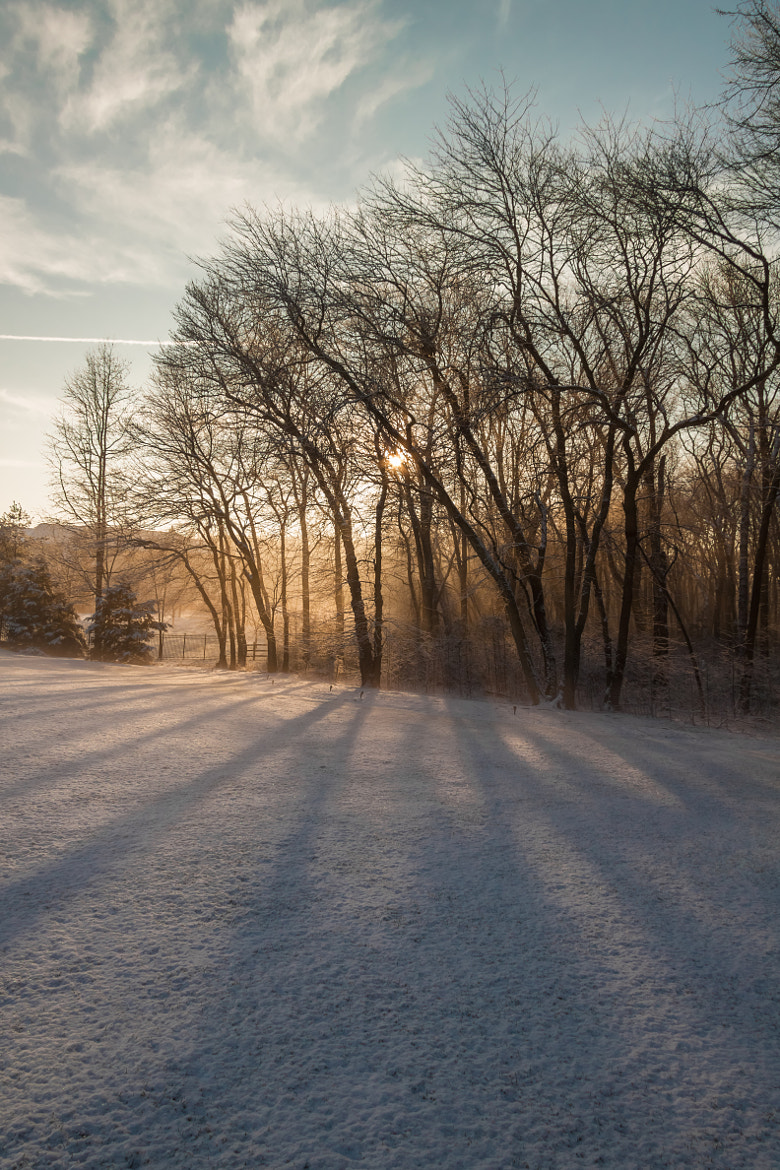 Photograph Snowy Sunrise by Anthony Colangelo on 500px