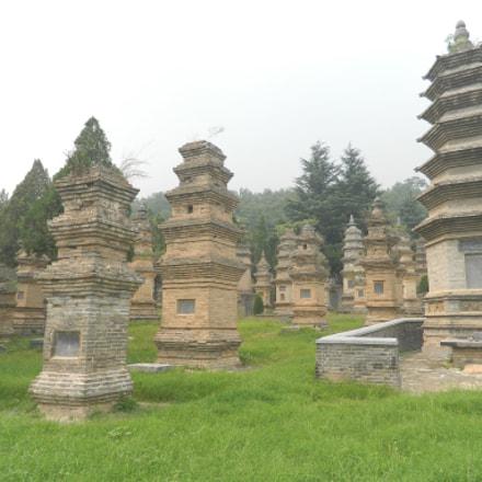 pagoda forest, Nikon COOLPIX L310
