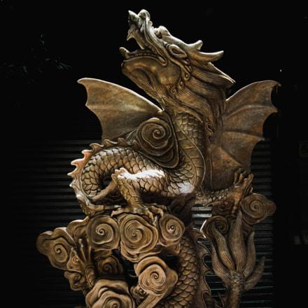 The dragon 2, Fujifilm FinePix HS10 HS11