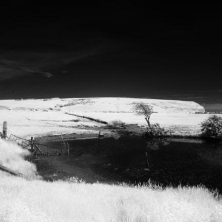 Cuckmere Valley Pond, Canon POWERSHOT SX210 IS