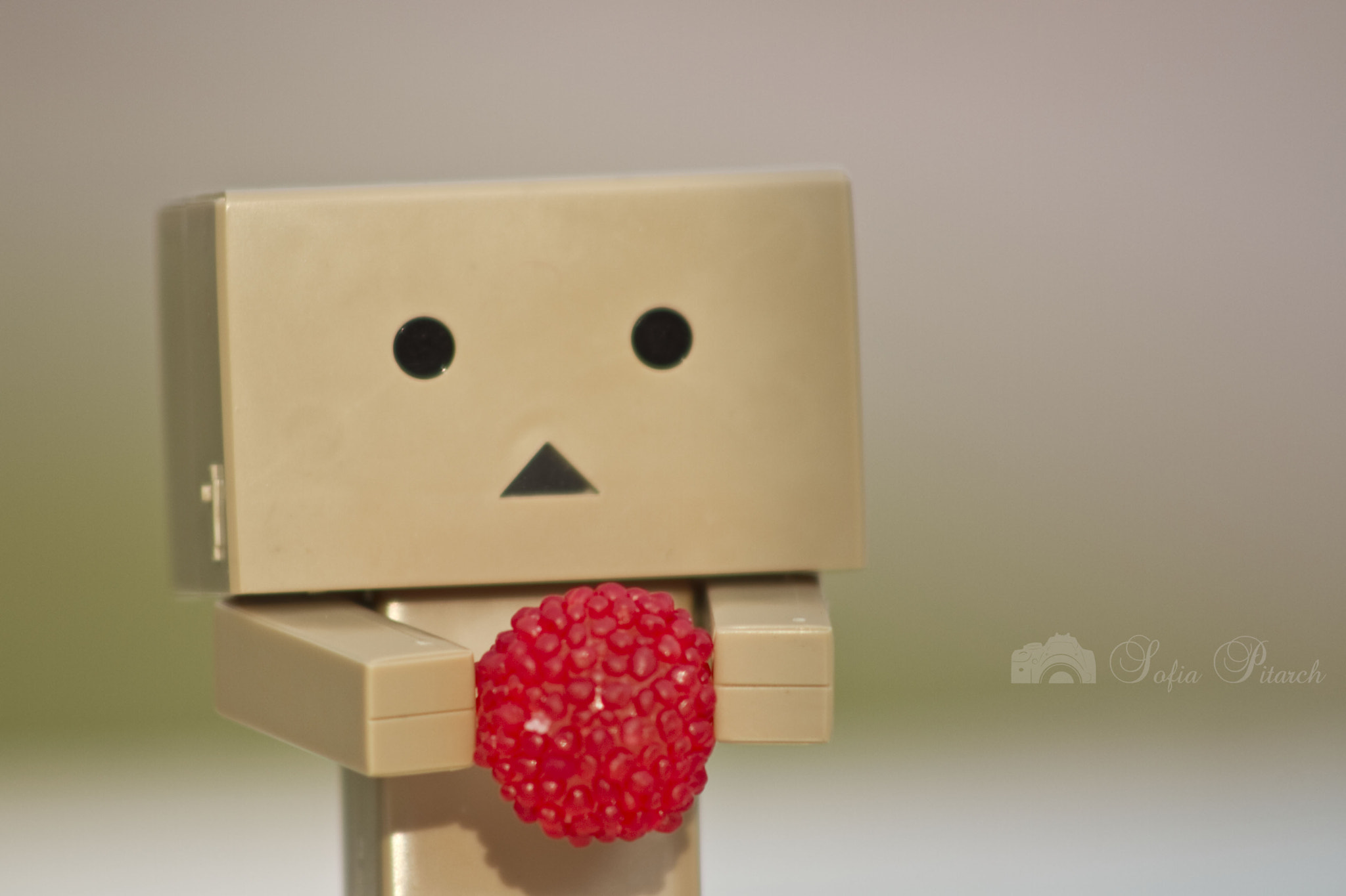 Photograph Hoy he conocido a Danbo by Sofía Pitarch on 500px