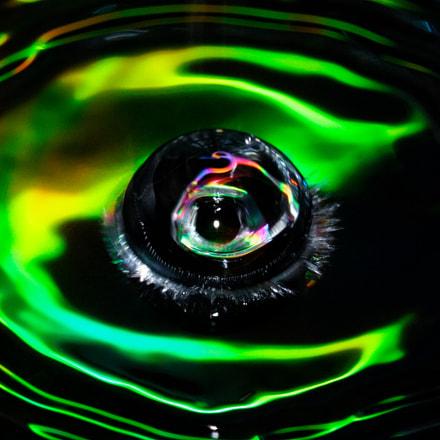 Green Eye, Canon EOS REBEL T7I, Canon EF 100mm f/2.8L Macro IS USM
