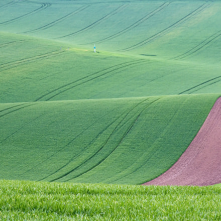 Moravian fields, Canon EOS 60D, Canon EF 28-105mm f/3.5-4.5 USM