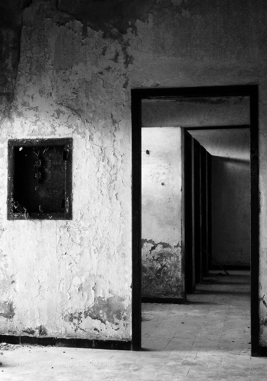Photograph Doors by Yann VDM on 500px