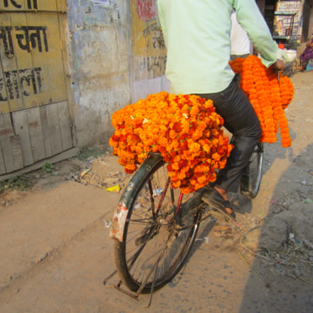 Indian flower man, Canon IXUS 130