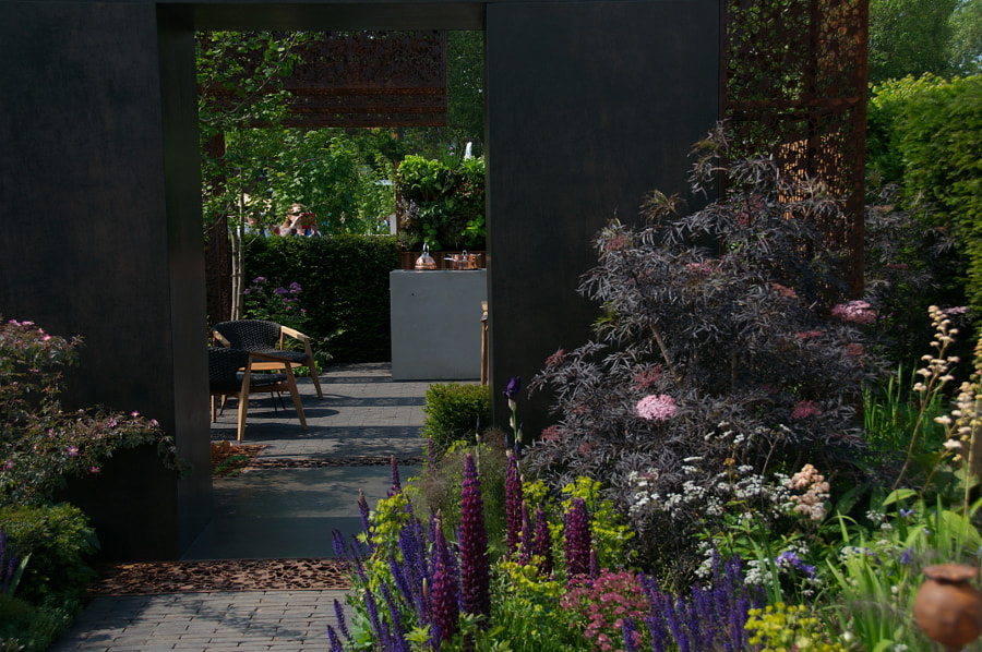 Chelsea Flower Show 2018 by Sandra  on 500px.com