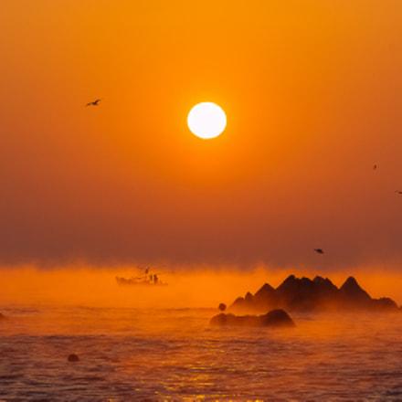 The sea is full, Fujifilm FinePix S5Pro