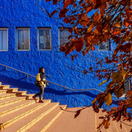 Steps into autumn, Panasonic DMC-LX5
