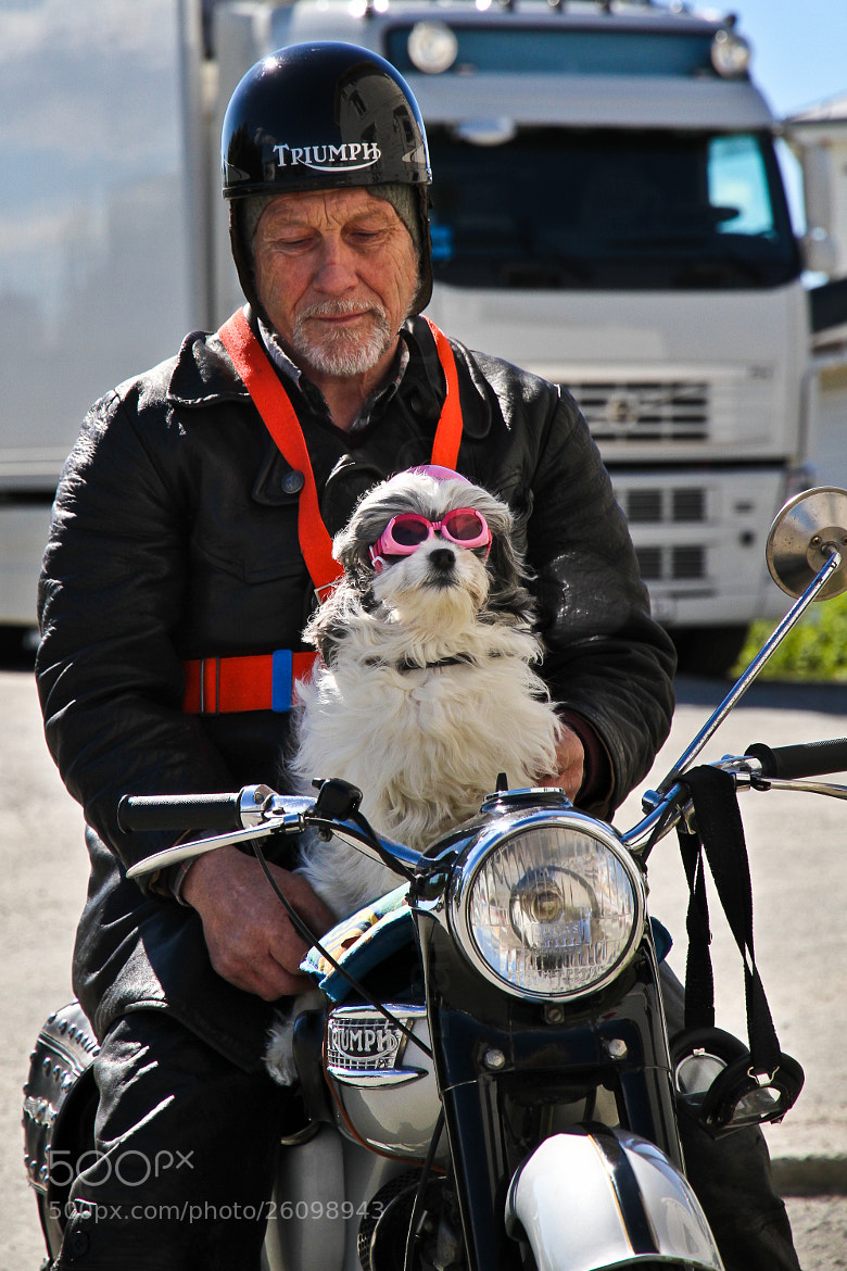 Photograph Old dog New tricks by Daniel Solstrand on 500px