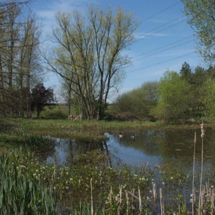 Tranquil lake, Nuneham Courtenay, Fujifilm FinePix S5Pro