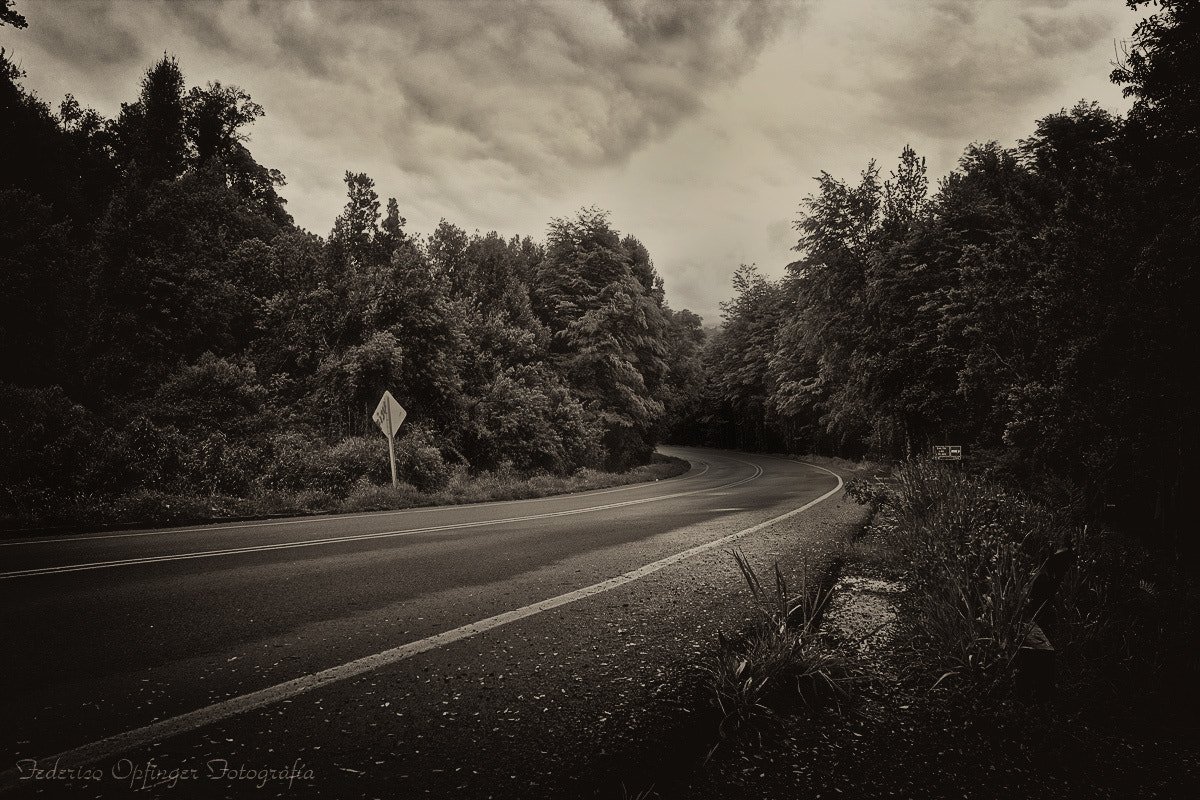 Photograph The Road by Federico Opfinger on 500px