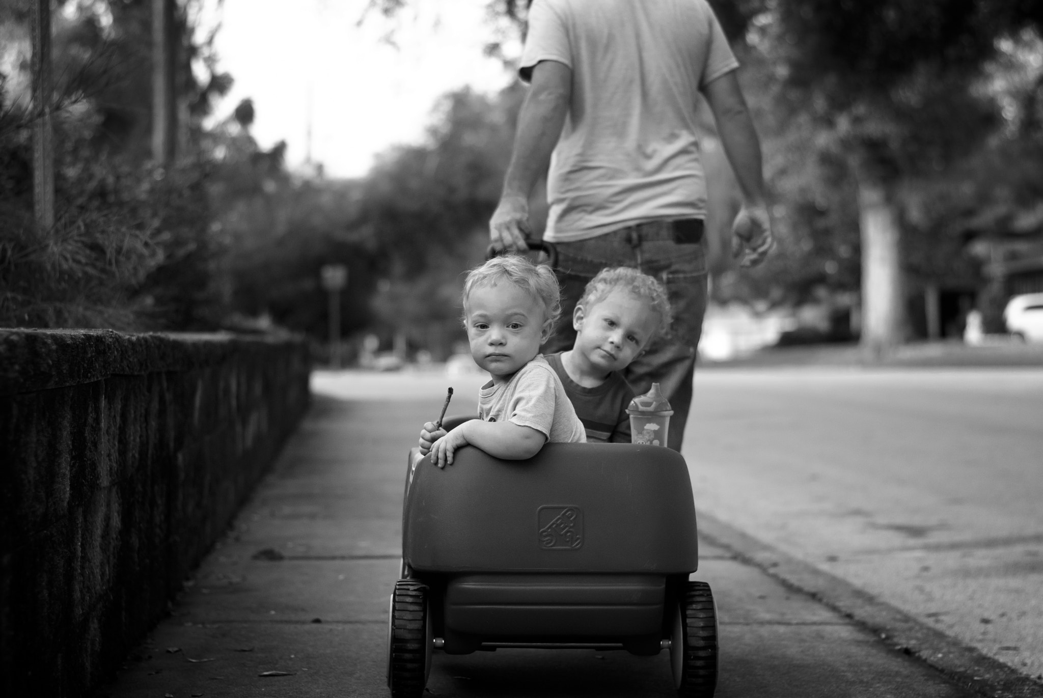 Photograph Wagon Ride by Mark Hammer on 500px